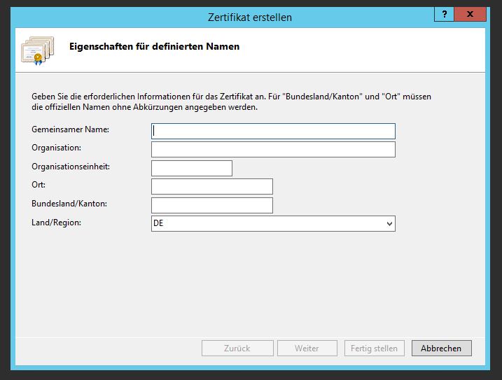Active Directory IIS Certificate Request First Page