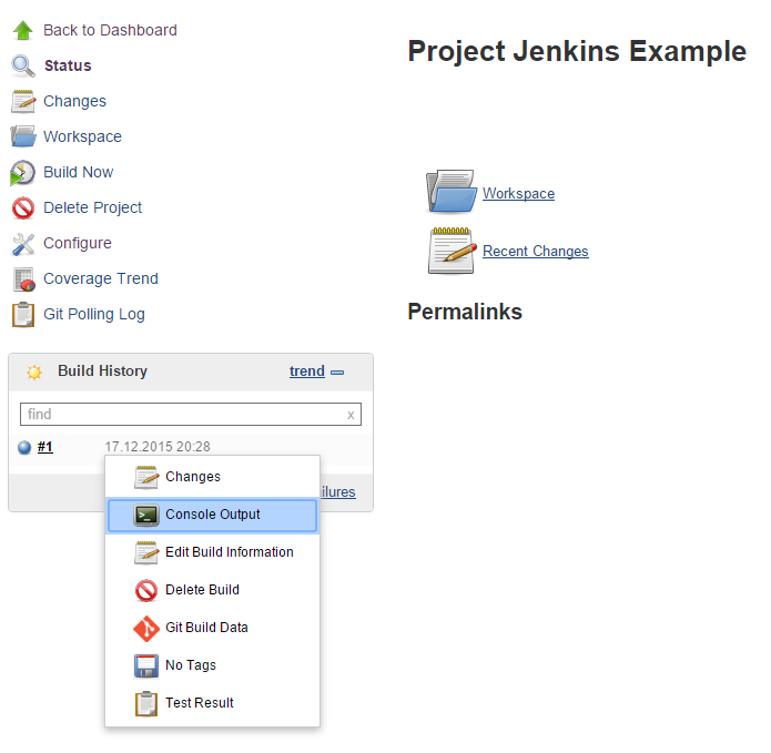 Jenkins Job Overview with Completed Job